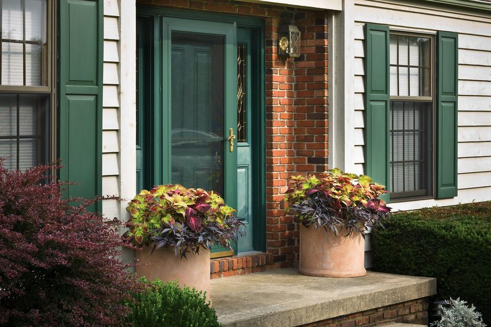 Front door plant ideas Container plant ideas front door